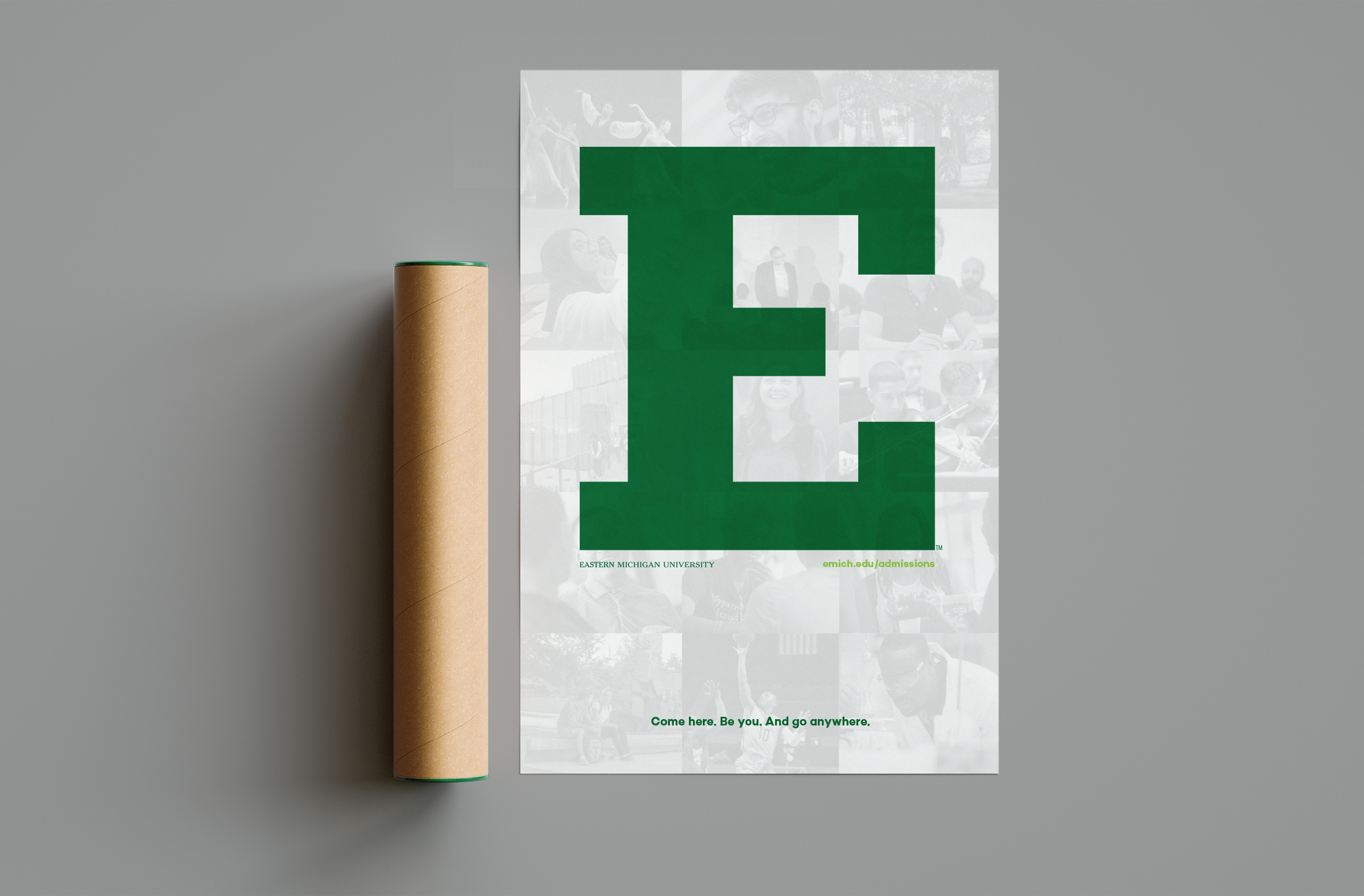 emu_casestudy_poster